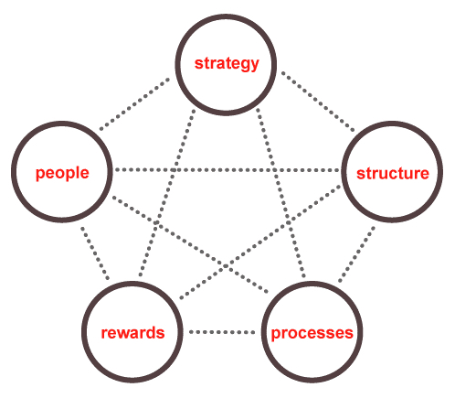 Scrum education - star model.jpg